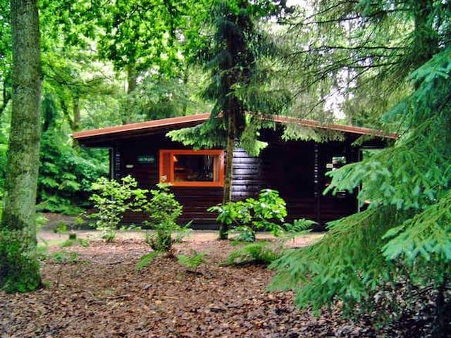 Knus huis in het bos, met grote tuin - Meppen - Bungalow