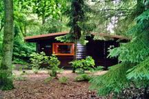 Knus huis in het bos, met grote tuin