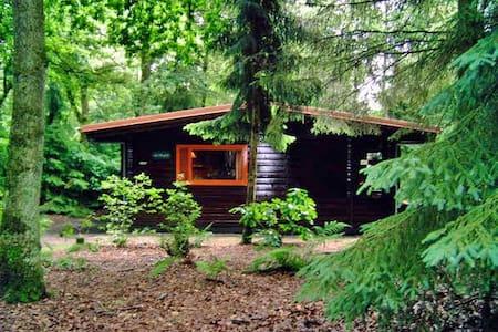 Knus huis in het bos, met grote tuin - Meppen - 平房