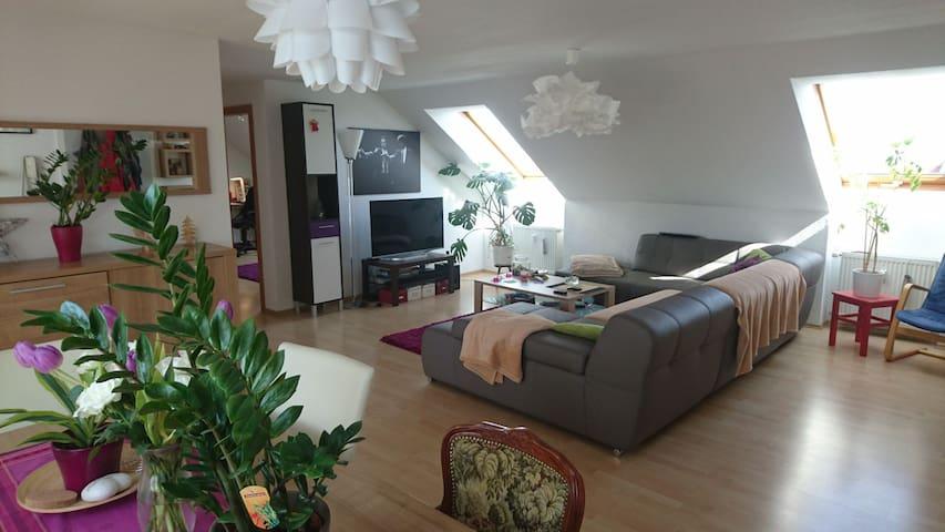 Zimmer in Dachgeschosswohnung - Bindlach - Apartment