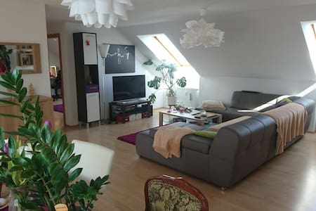 Zimmer in Dachgeschosswohnung - Bindlach - Appartement