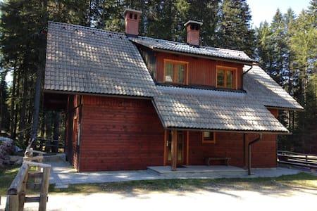 Forest cottage Pokljuka - House11 - Zgornje Gorje