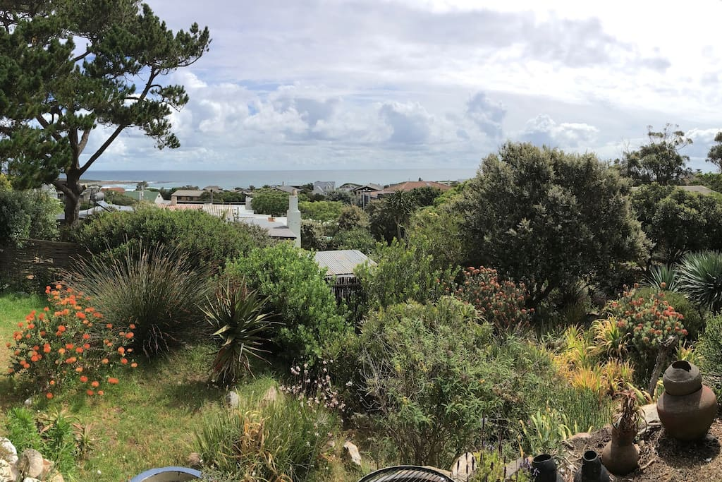 View from the verandah and braai area