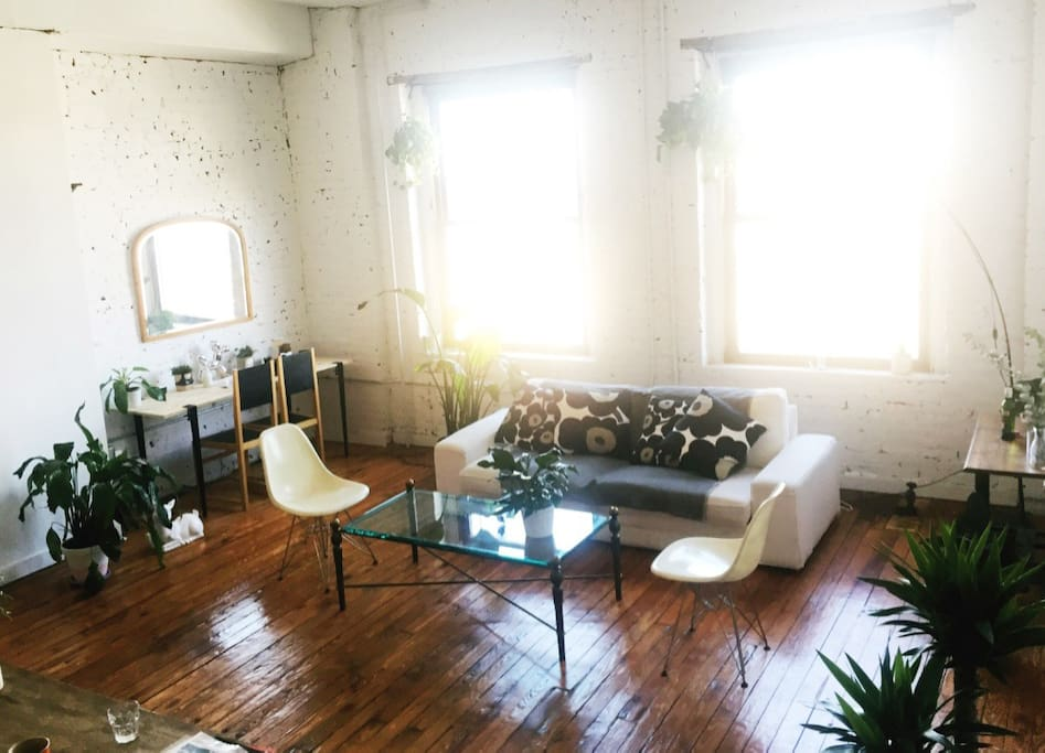 Our common space living room with huge windows and lots of plants