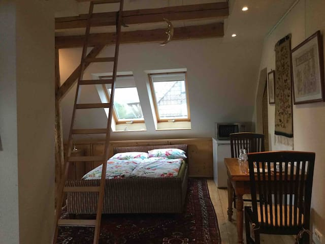 Charming Apartment under the roof