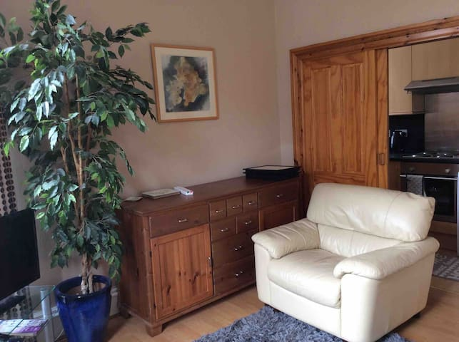 2 bed traditional granite city centre flat 2floor