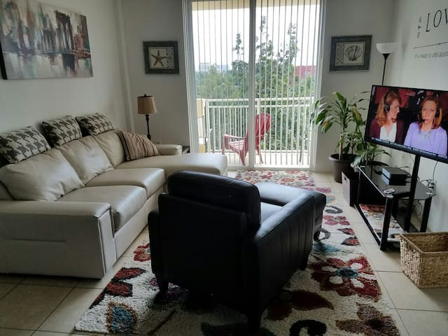 Two Bedrooms Two Baths Apartments For Rent In Miami Florida United States