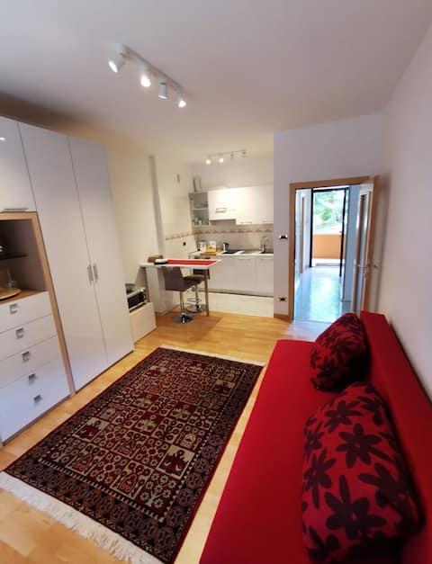 Elegant studio apartment with kitchen and bathroom