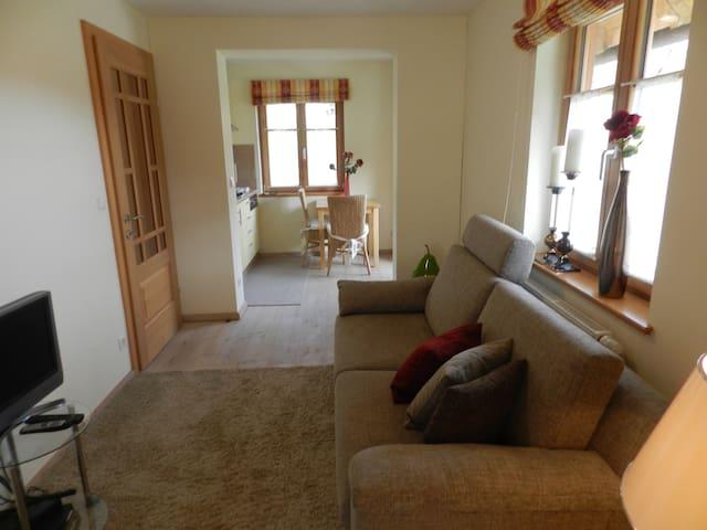 Hochwertig ausgestattetes Apartment mit Wohnküche - Marktgemeinde Übelbach - Bed & Breakfast