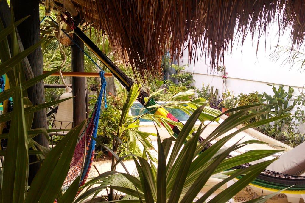 Hamaca y columpio de hamaca para disfrutar y descansar , con la frescura que proporcionan las plantas.