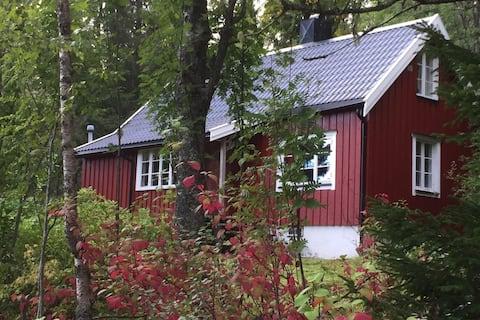 Guristuggu, a cosy cabin in the woods