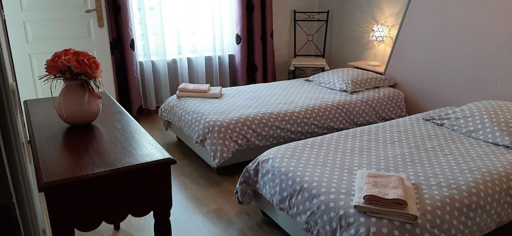 Chambre Lilas deux lits simples salle d'eau (douche) et WC privatifs