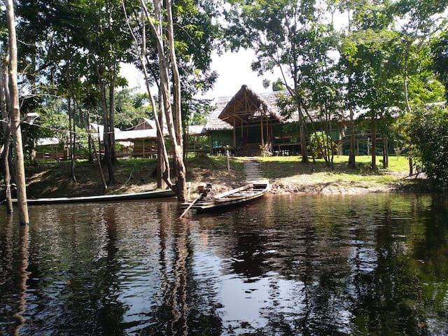 la casa del ayahuasquero