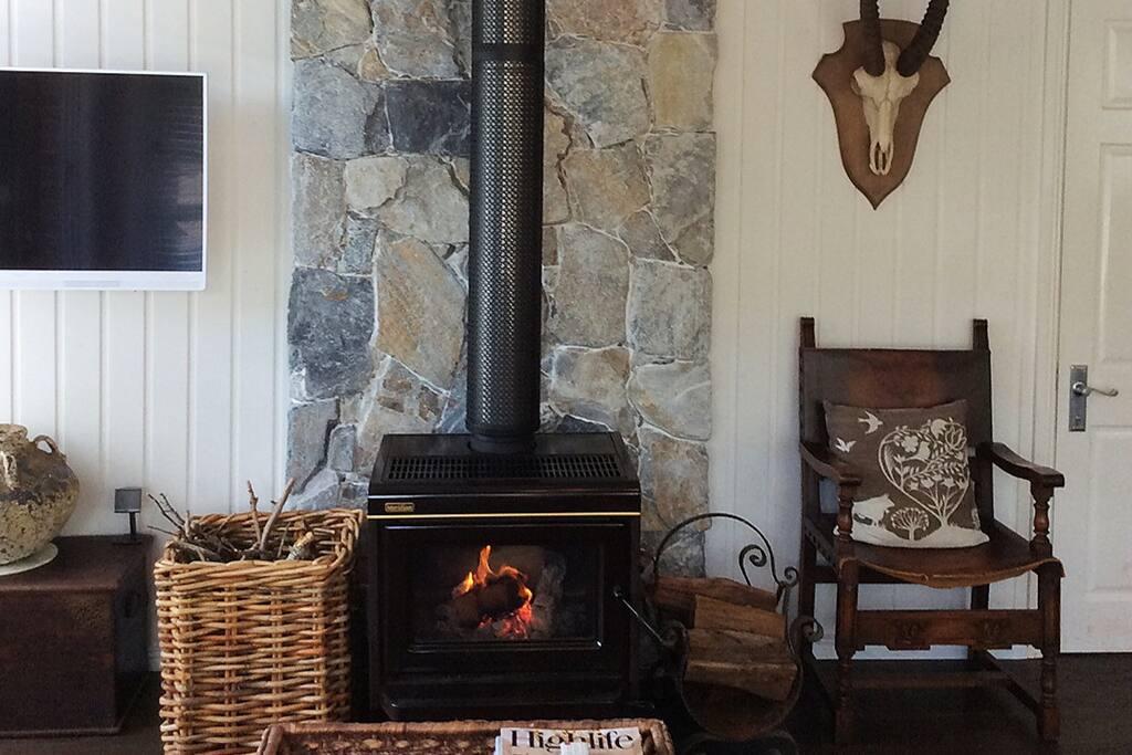 Cosy wood heater