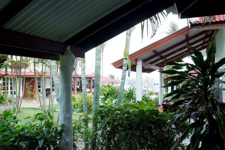 Chaweng Resort - Basic room