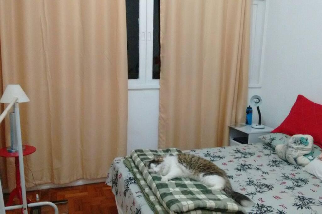 O gato não vai invadir, mas pode ter resquícios da visita... :P