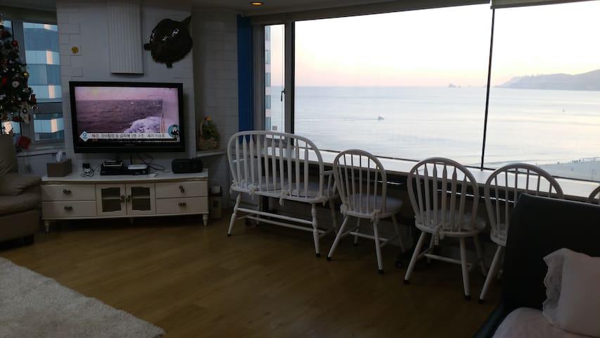 window bench 바다가 보이는 윈도벤치