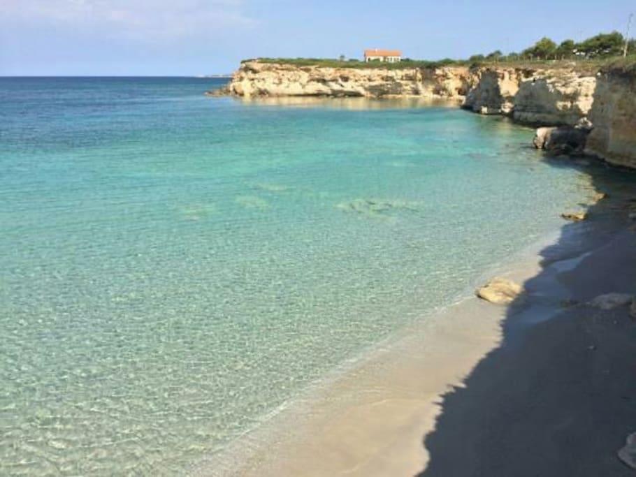 Spiaggia S anea scoada