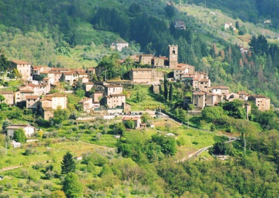 Casa della pia ville in affitto a sorana toscana italia for Casa della piastrella firenze