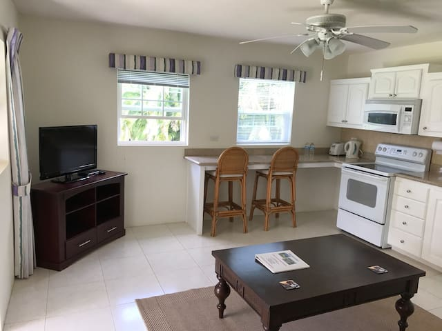 1 Bedroom Luxury Apartment Centrally Located - Bridgetown - Apartment