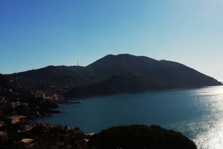 """""""CasaGolfoParadiso  5min to beach!"""" 010047-LT-0009"""
