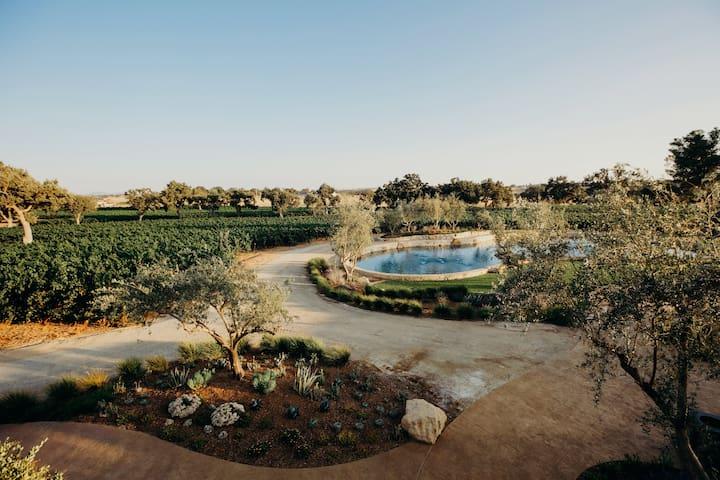 Villa Giada at Rava Wines Estate