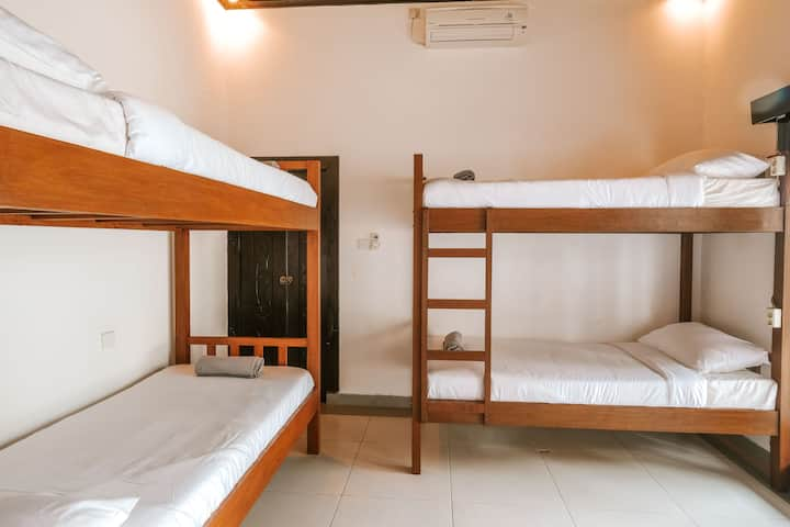 6 Mixed Dorm Rooms Palms Canggu