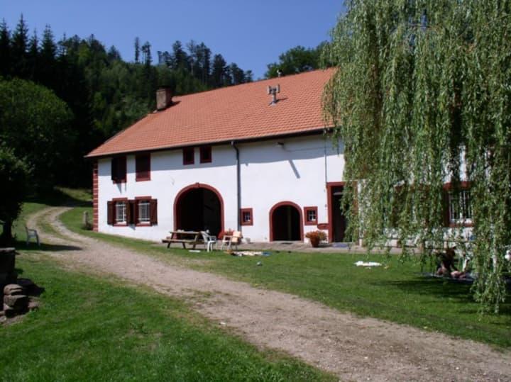 Gîte à la ferme au cœur des Vosges, pour 12 pers.