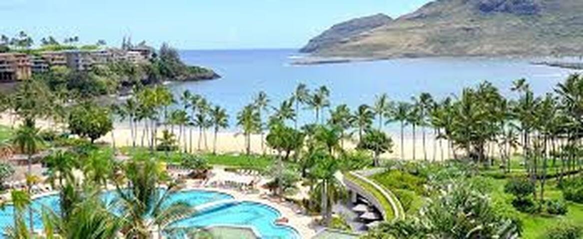 Marriott Kauai Beach Club on the Ocean - Studio