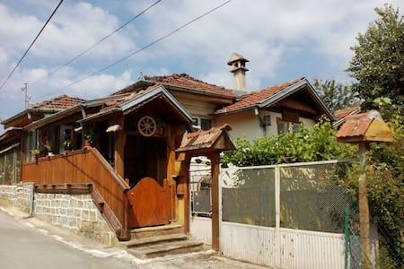 Къща за приятели Митрето - Todyuvtsi