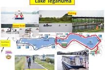 Walking, cycling, fishing, boating in Lake Teganuma