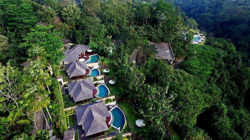 Peacefully Jungle Retreat 1 Bedroom Romantic Villa