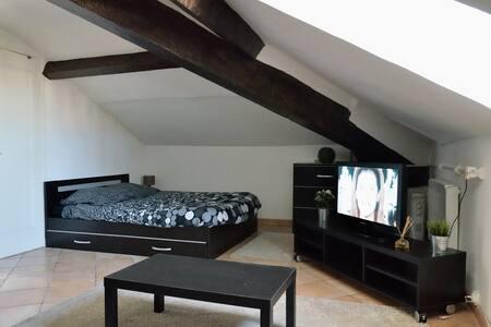 Studio climatisé, Croisette à 300 m - Cannes - Apartment