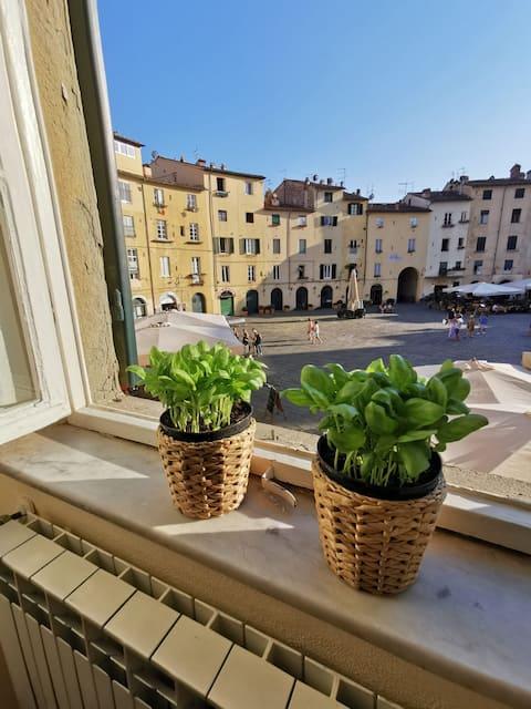 In Anfiteatro. Vivere Lucca immersi nella storia