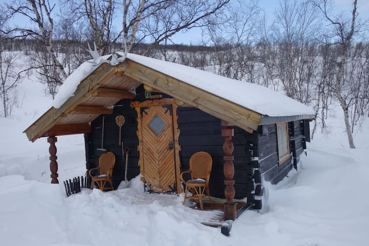 Northern lights cabin in the wilderness.