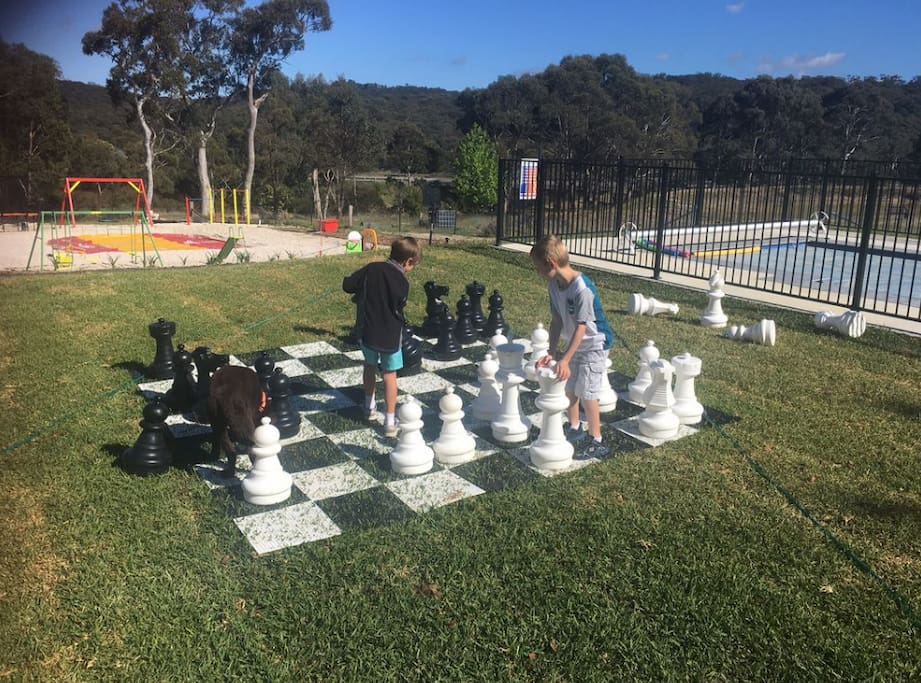 Pool, Chess, Kangaroo Jumper