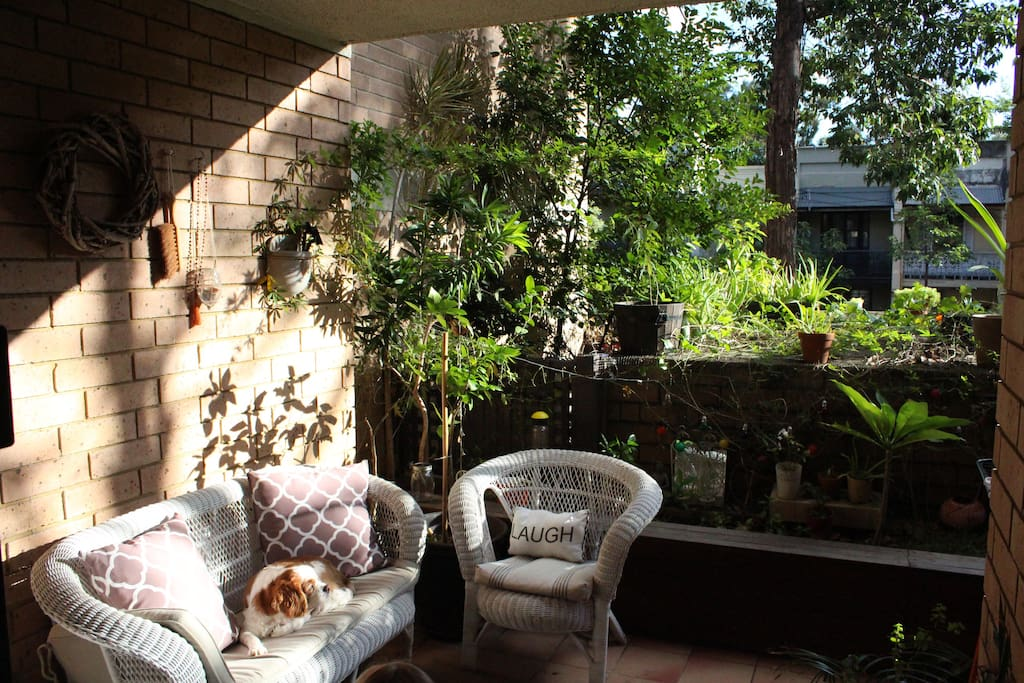Sunny green courtyard- elevated from the street