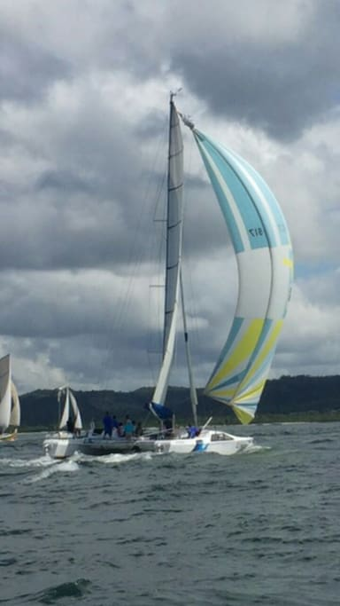 Speed with huge sails