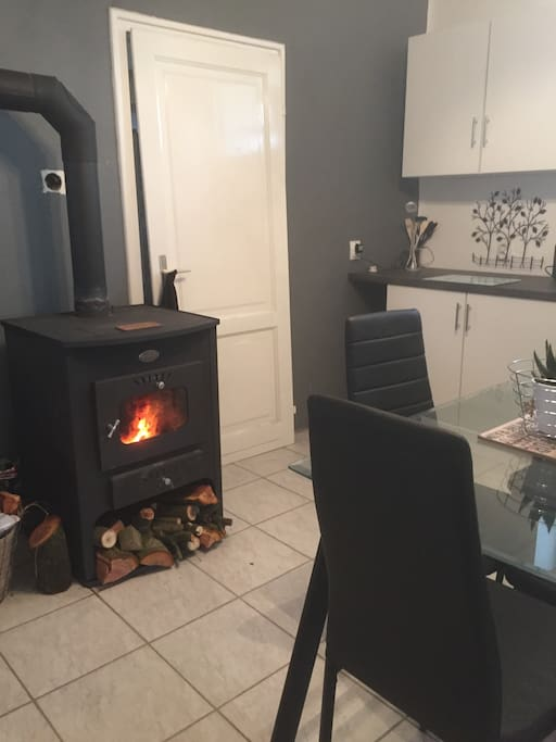 Log burner which services the central heating.