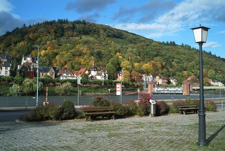 Nice Apartment direct in Old City - Heidelberg - Appartement