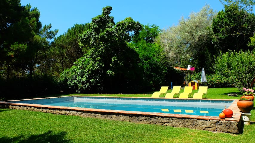 Lagoa Beach House - Private Pool - Melides
