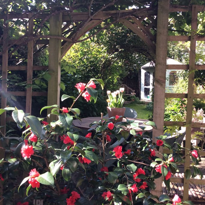 Our spring garden