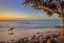 Hastings St Main Beach - catch the free bus during holidays!