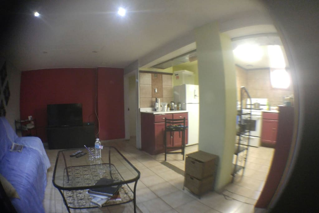 Livingroom and kitchen open concept area.