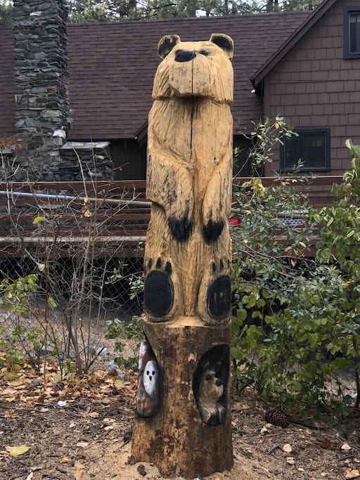 Sadly, we lost a pine tree to bark beetle. I had 8 Feet of the trunk left behind and a local wood carver did this!