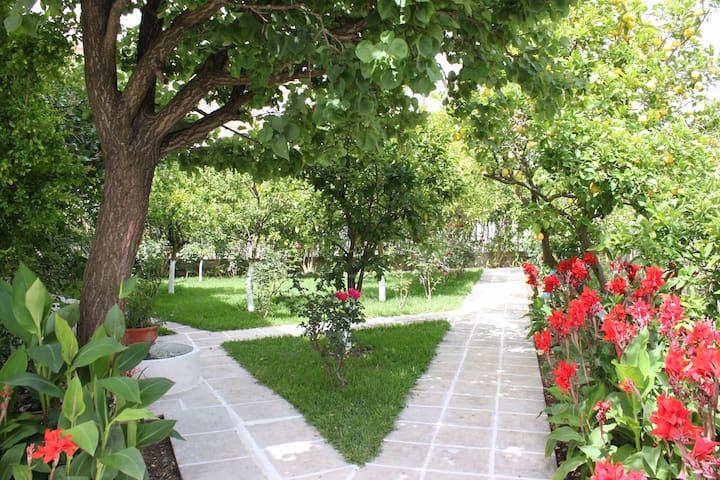 Garden View Apartment next to sea, cosy balcony - Lefkada - Apartment