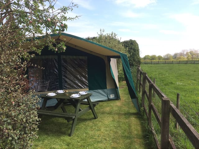 Large, spacious luxury trailer tent - Whittlebury
