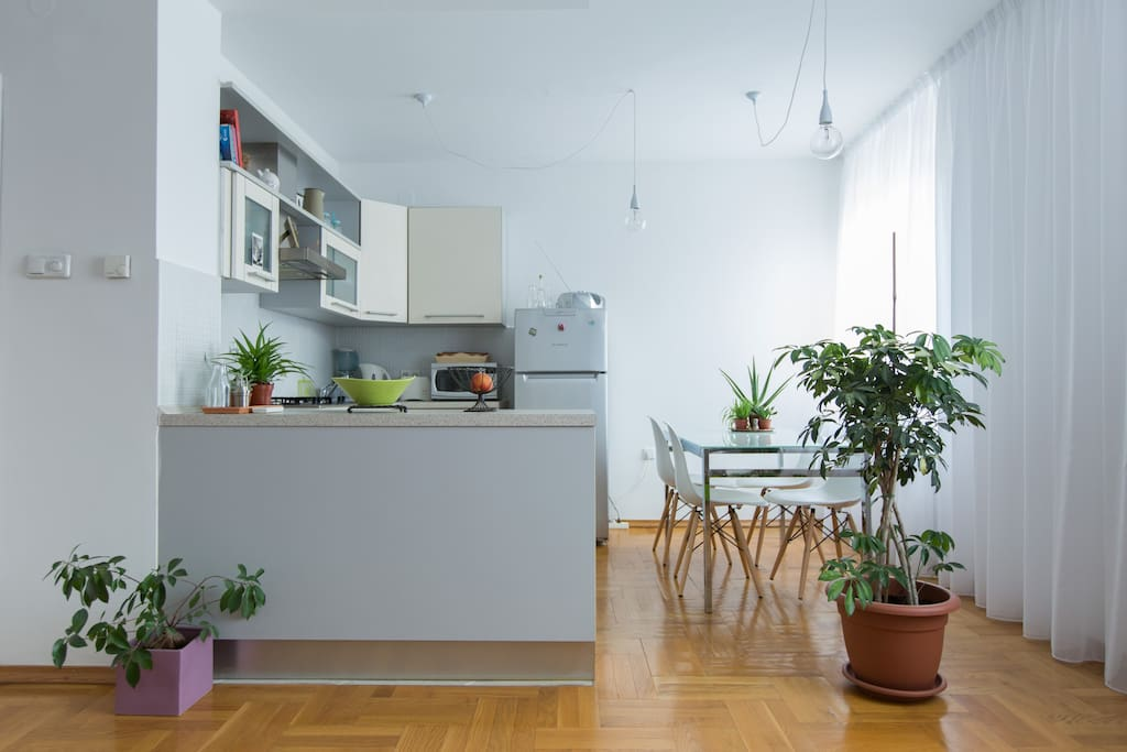 Very bright apartment