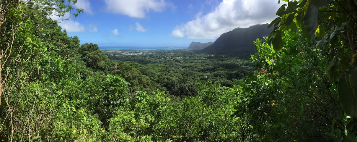 Off The Grid, Organic Country Farm Paradise Bus - Waimanalo - Altro
