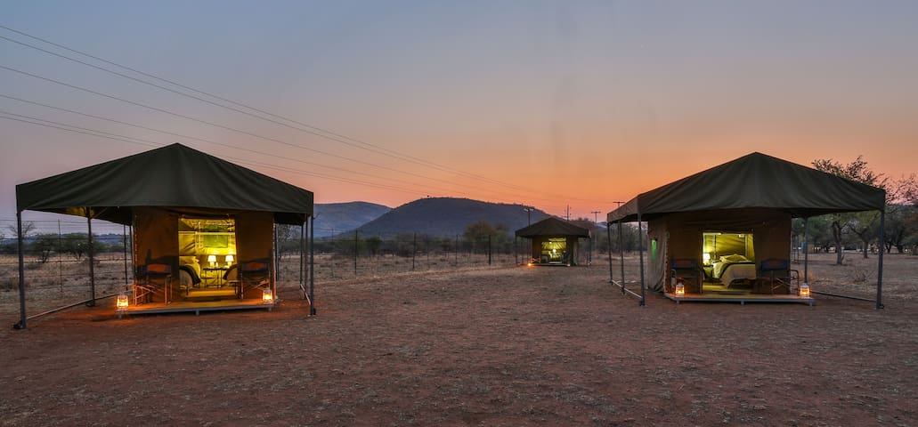 A authentic safari experience - Bojanala - Telt